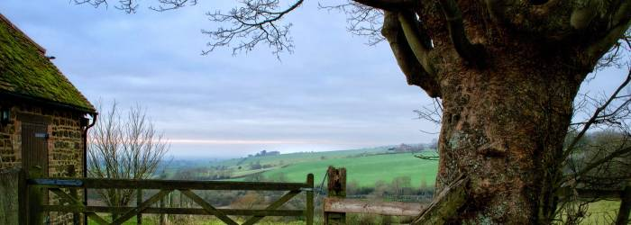 English countryside viewed over a gate
